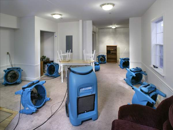 Water Damage Humidifiers