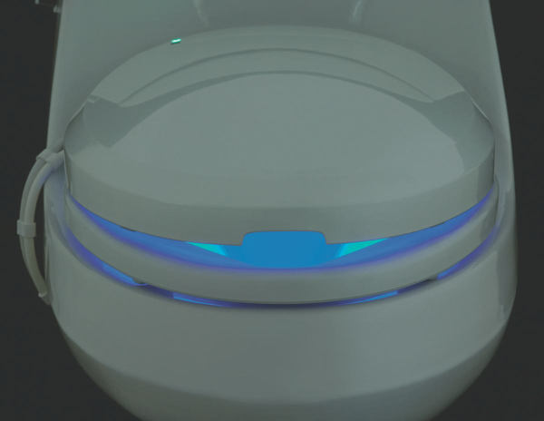 heated toilet seat resized 600